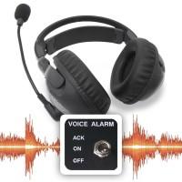 Voice/Audio